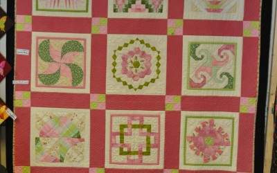 Denise W, her 2nd quilt sampler
