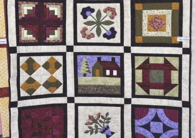 Carol N. Completed quilt