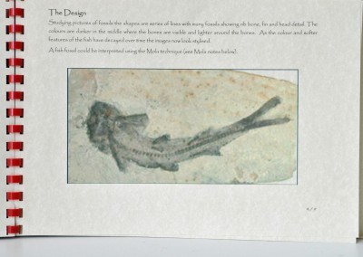 19. Jo G. A design for reverse applique based on a fossil fish.