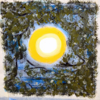 Gillian M. sketch of sun shining through a canopy of trees