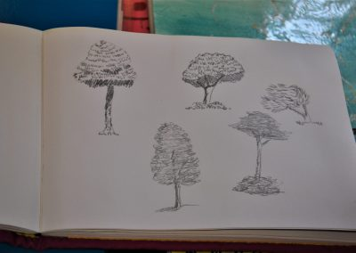 Amanda R. 49. Form - landscape